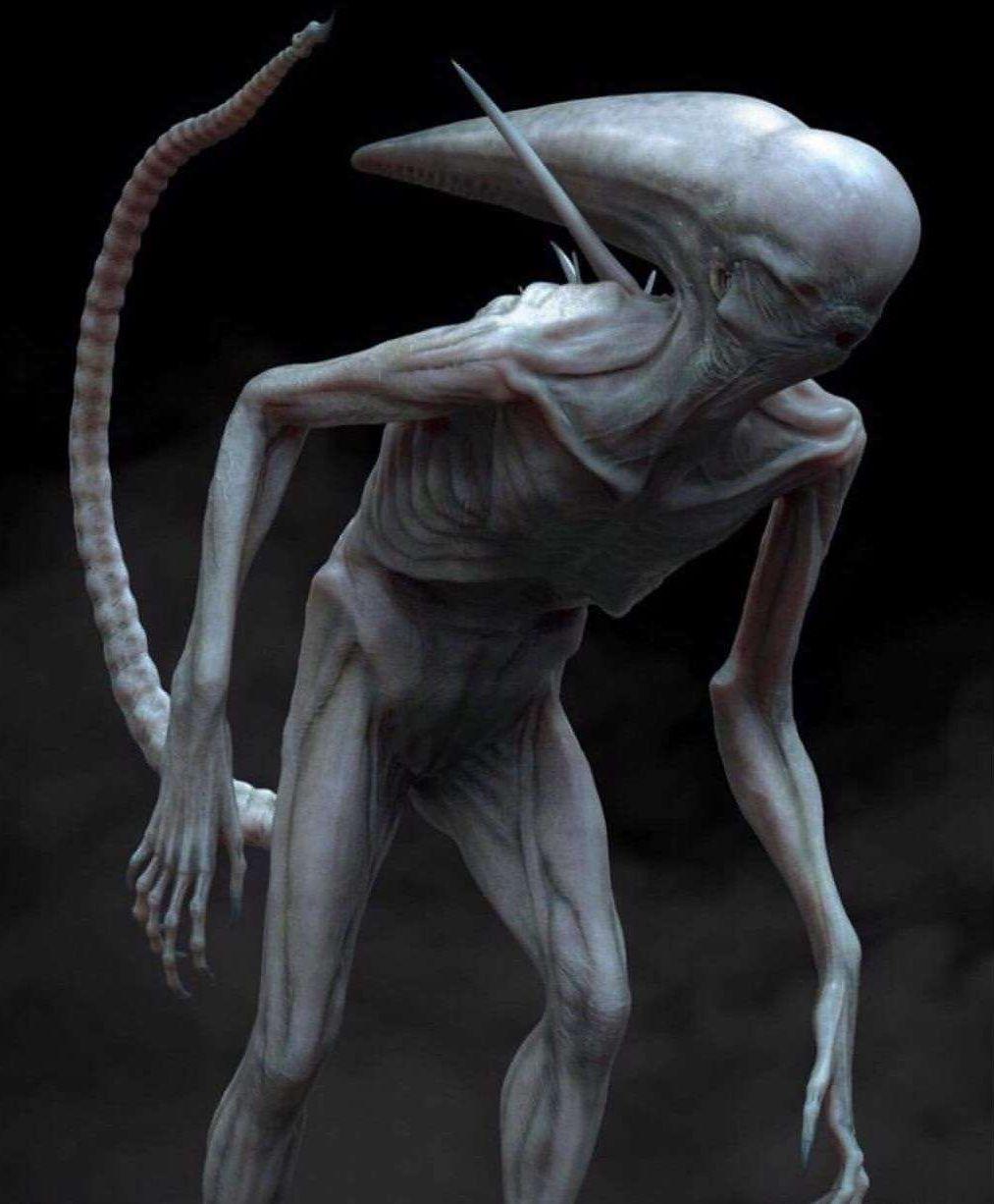 Neomorph (Alien Covenant, 2017)