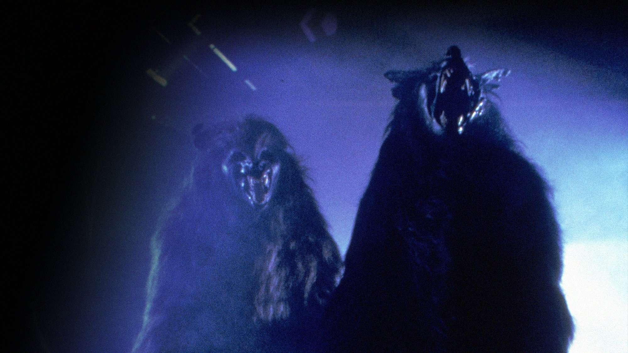 The Werewolf - Werewolf TV Series